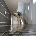 Champion Realty Insurance - Flood Insurance